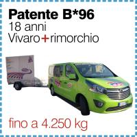 mezzi_vivaro_v17